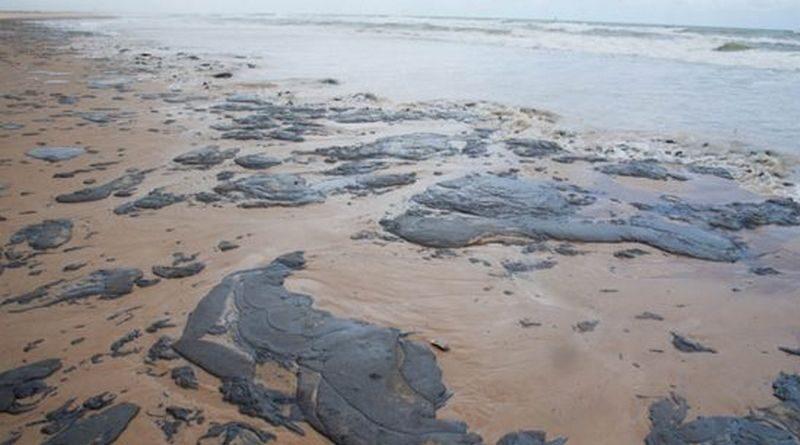 As lições sobre o óleo que manchou o litoral do Brasil